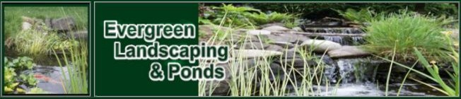 Evergreen Landscaping & Ponds | Waterfalls | Landscape Design | Olympia WA